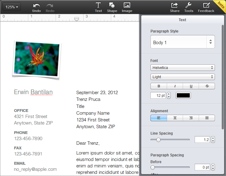 iwork-document-screenshot